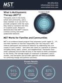 Fact-Sheet-MST-Overview